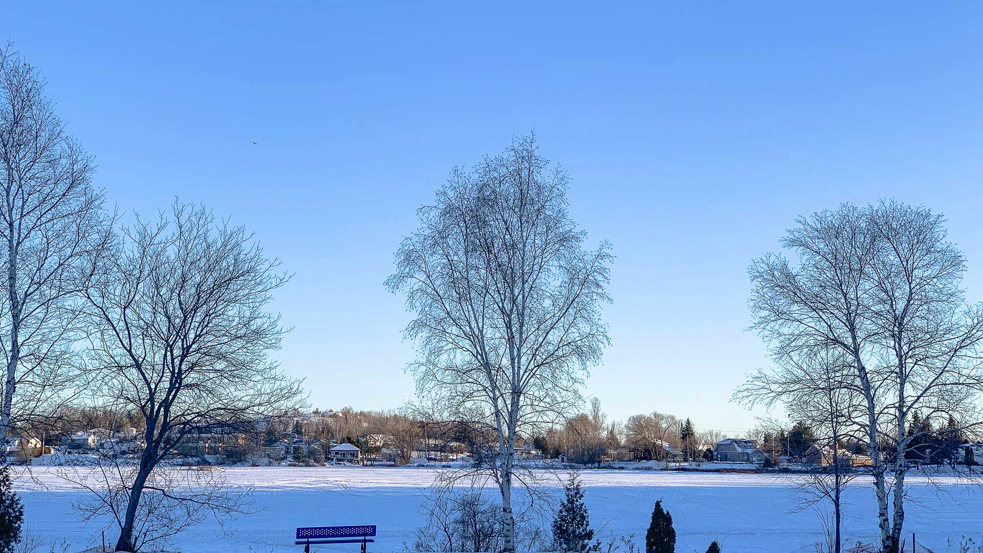 Minnow-Lake